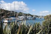 Boats moored at Whangarei Marina in the town basin - Northland New Zealand NZ. poster