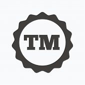 Registered TM trademark icon. Intellectual work protection symbol. Gray flat web icon on white background. Vector poster