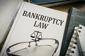 Bankruptcy law book. Justice and legislation concept. poster