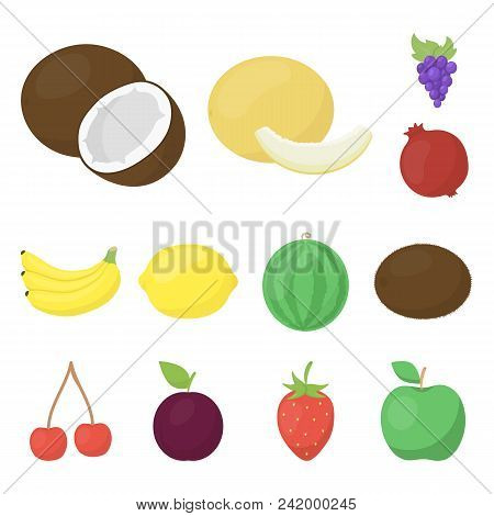 Different Fruits Cartoon Icons In Set Collection For Design. Fruits And Vitamins Vector Symbol Stock