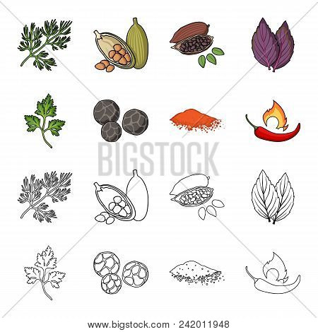 Ptrushka, Black Pepper, Paprika, Chili.herbs And Spices Set Collection Icons In Cartoon, Outline Sty