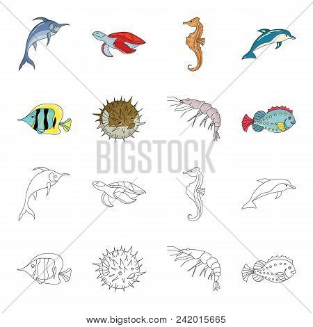 Shrimp, Fish, Hedgehog And Other Species.sea Animals Set Collection Icons In Cartoon, Outline Style