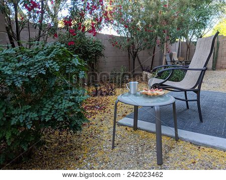Outdoor Breakfast In Arizona Desert Style Xeriscaped Backyard With Crisp Fresh Air In Early Spring M