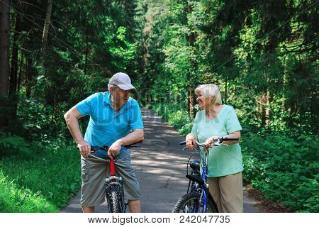 happy senior couple riding bikes in nature share joke, active lifestyle poster