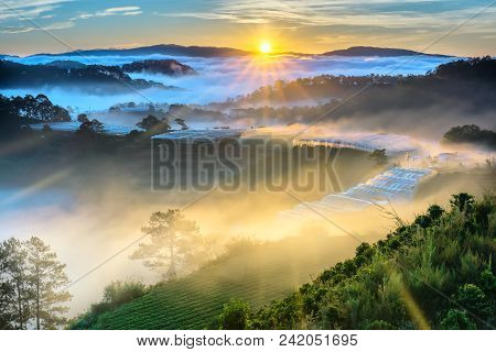 Sunrise Over Hillside As The Sun Rising From Horizon Reflect Light Bright Yellow Sky. Below Cloudy M