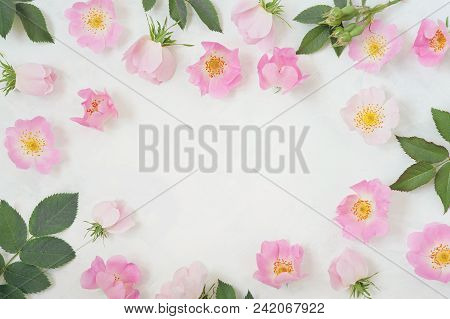 Round Frame Wreath Pattern With Roses, Pink Flower Buds, Branches And Leaves Isolated On White Backg