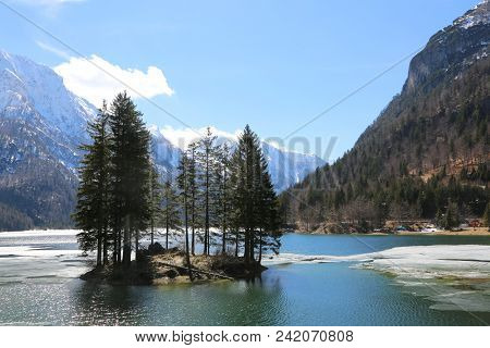 Island With Firs On The Alpine Lake Called Lago Del Predil In Northern Italy