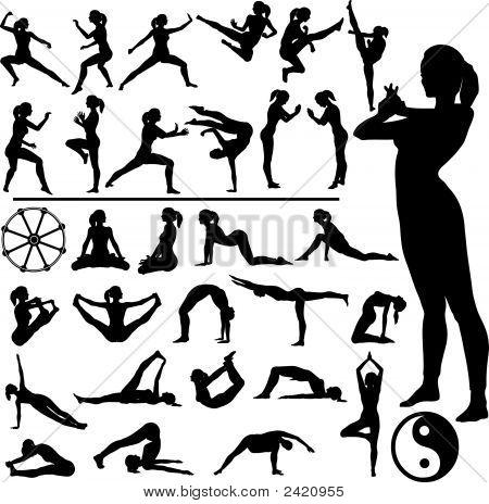 Fitness Women Martial Arts Yoga.