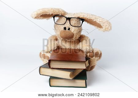 A Soft Toy Rabbit In Glasses Sits With A Stack Of Books.