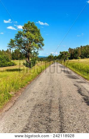 Old Asphalt Road In The Countryside In The Czech Republic. Abandoned Road. Summer Day On The Road