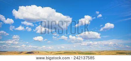Beautiful Summer Landscape With Field Wood And Sky