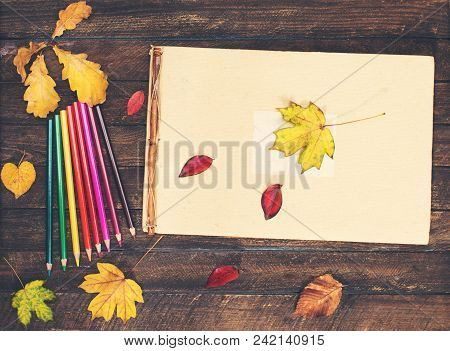 Album Craft Pages And Color Pencils On A Wooden Background With Autumn Leaves.