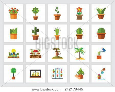 Houseplants Trees Vector & Photo (Free Trial) | Bigstock on