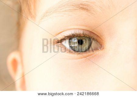 Beautiful Little Girl's Eye. Macro Close Up Eye