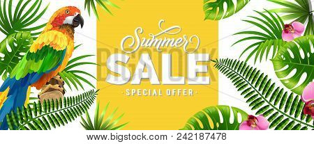 Summer Sale, Special Offer Banner Design With Palm Leaves, Tropical Flowers And Parrot. Text Can Be