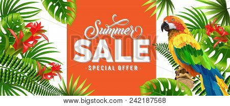 Summer Sale, Special Offer Orange Banner Design With Palm Leaves, Red Tropical Flowers And Parrot. T