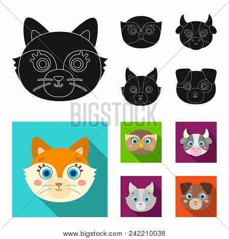 Owl, Cow, Wolf, Dog. Animal Muzzle Set Collection Icons In Black, Flat Style Vector Symbol Stock Ill