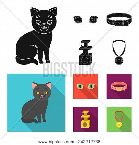 Cat Eyes, A Collar, A House For A Cat, A Medal On A Ribbon.cat Set Collection Icons In Black, Flat S
