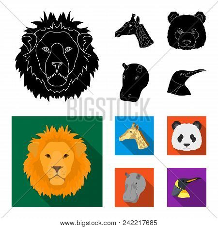 Panda, Giraffe, Hippopotamus, Penguin, Realistic Animals Set Collection Icons In Black, Flat Style V