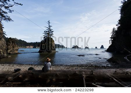 Man Sits On A Log On Rocky Beach