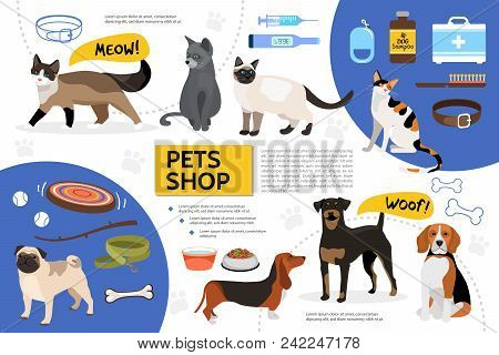 Flat Pet Shop Infographic Template With Dog Cat Food Toys Bowls Collar Comb Leash Syringe Medical Ki