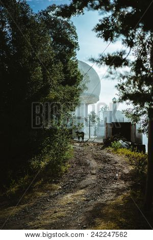 View Of A Weather Station With A Large White Sphere In Coniferous Forest On An Early Morning. Sunbea
