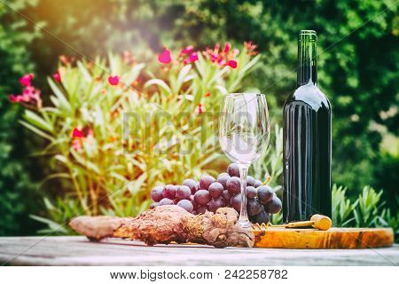 Bottle Of Red Wine With Fresh Grape . Wine Tasting And Gastronomy Concept