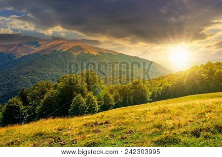 Beautiful Landscape Of Carpathian Mountains At Sunset. Forested Hills And Apetska Mountain In The Di