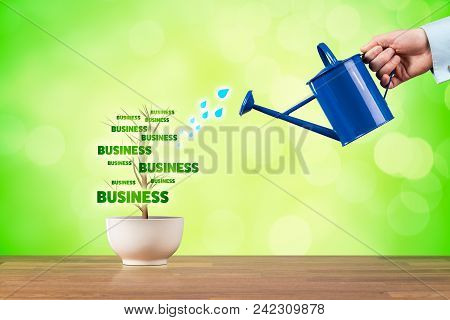 Small Business Growth Concept. Small Business Growth Represented By Plant Watered By Businessman.