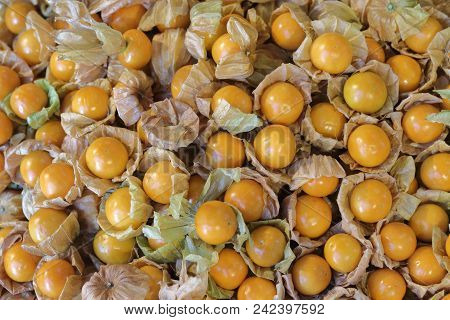 Cape Gooseberry Fruit On Sale In The Market