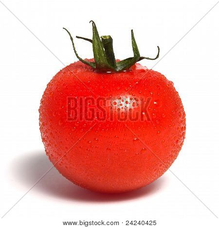 Single Red Tomato With Water Drops