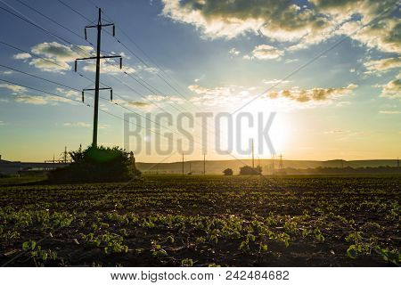 Beautiful Morning Colorful Sunrise. View Of Foggy Fields With Blue Cloudy Sky. Scenic Landscape