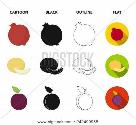 Melon, Plum, Pineapple, Lemon.fruits Set Collection Icons In Cartoon, Black, Outline, Flat Style Vec