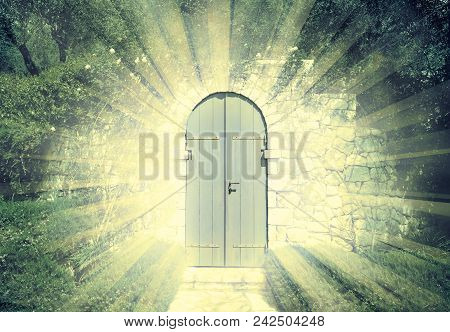Door Of The Heaven In A Dreamy Rosegarden  With Sunbeam