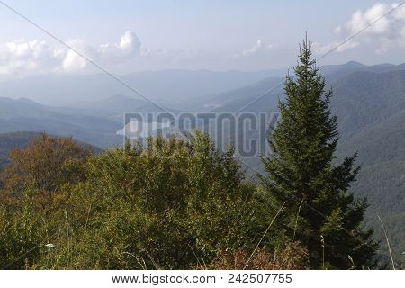 Appalachian Mountain Wilderness High Elevation View From Mount Mitchell State Park In North Carolina