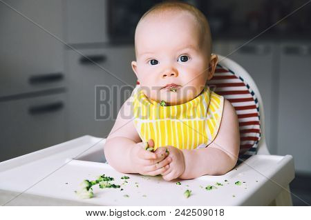 Baby's First Food To Feed