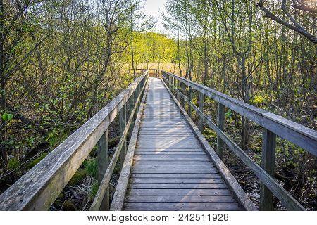 A Path And Footbridge Over Muddy Wetland, May 3, 2018, Arreso, Denmark