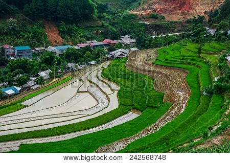 Mountain Township With Terraced Rice Field