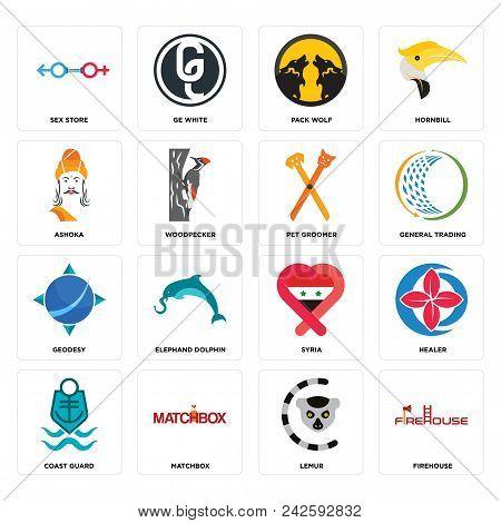 Set Of 16 Simple Editable Icons Such As Firehouse, Lemur, Matchbox, Coast Guard, Healer, Sex Store,