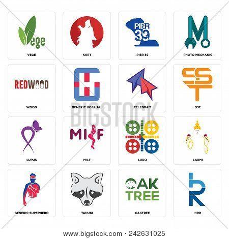 Set Of 16 Simple Editable Icons Such As Hrd, Oaktree, Tanuki, Generic Superhero, Laxmi, Vege, Wood,