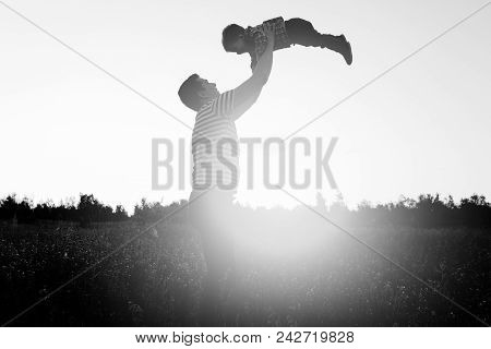 Father Playing With His Little Son In Flower Field At Sunset. Man Throw Up Little Boy.