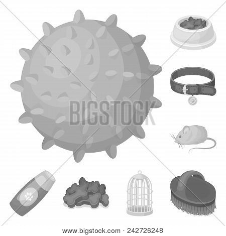 Pet Shop Monochrome Icons In Set Collection For Design.the Goods For Animals Vector Symbol Stock  Il