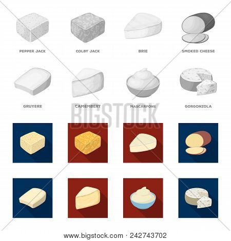 Gruyere, Camembert, Mascarpone, Gorgonzola.different Types Of Cheese Set Collection Icons In Monochr