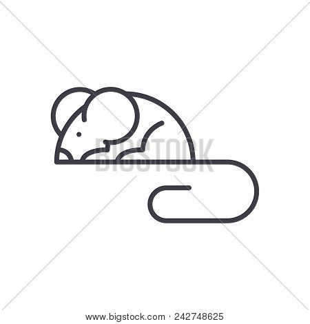 Mouse Rodents Black Icon Concept. Mouse Rodents Flat  Vector Website Sign, Symbol, Illustration.