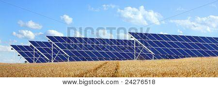Solarenergie Panels auf einem Weizenfeld gegen bedeckt.