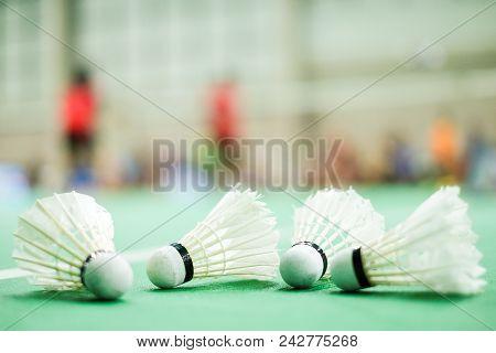 Shuttlecock Put On Green Floor Badminton Court - For Sport Background Or Texture.