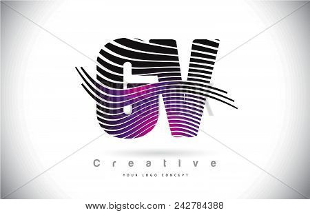 Gv G V Zebra Texture Letter Logo Design With Creative Lines And Swosh In Purple Magenta Color Vector