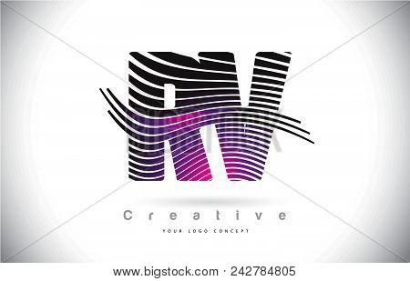 Rv R V Zebra Texture Letter Logo Design With Creative Lines And Swosh In Purple Magenta Color Vector