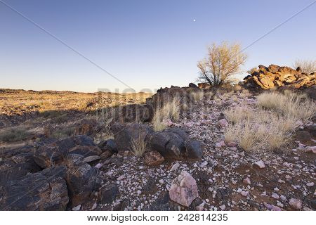 Landscape Of A Pink Quartz, Shrub And Grass In The Dry Desert