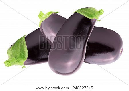 Isolated Eggplant. One Fresh Eggplant Over White Background With Clipping Path As A Package Design E